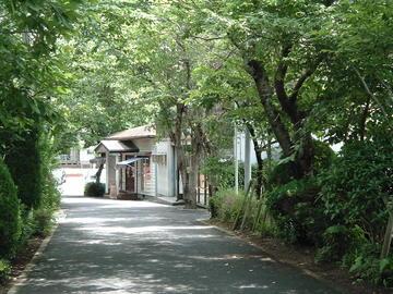 18. 園内風景-003.JPG