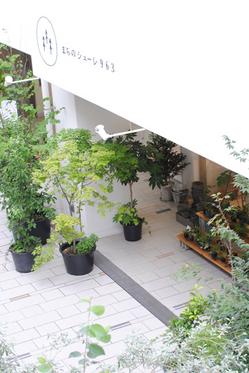 terrace01.jpg