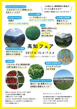 kouchi_2017_02.jpg