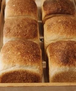食パン.jpeg