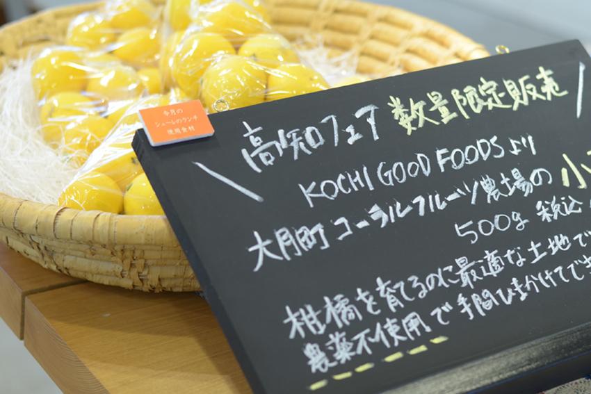 http://www.schule.jp/news/konatsu.jpg