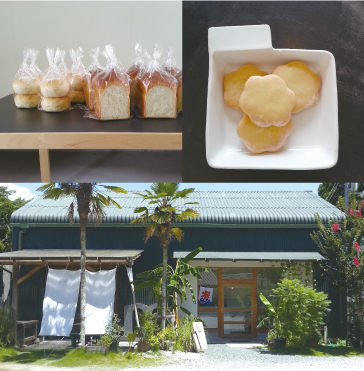 http://www.schule.jp/news/mongo_image.jpg